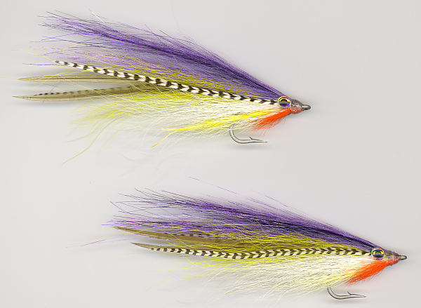 Couch's EC Baitfish Baby Weakfish